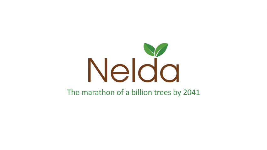 Why We Started Project Nelda