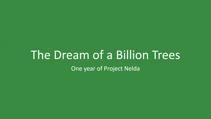 1 Year Of Project Nelda: What We've Achieved